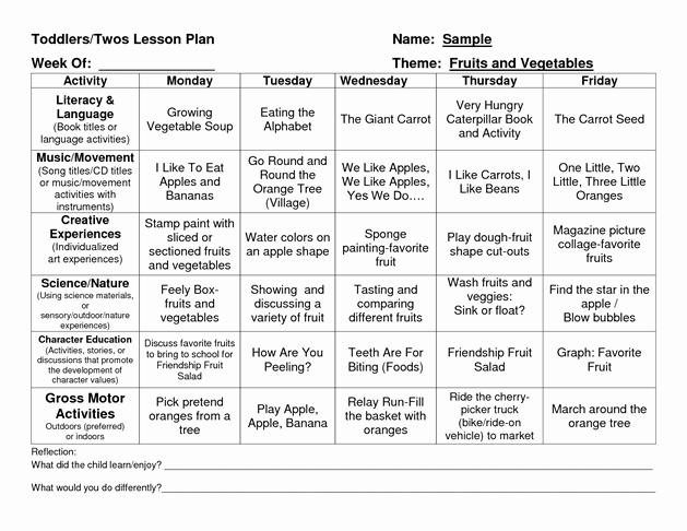 Creative Curriculum Lesson Plan Template Luxury Provider Sample Lesson Plan Template School