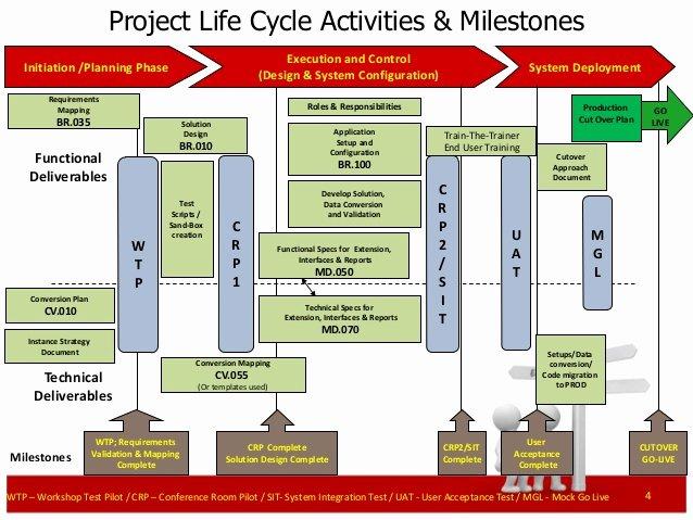 Cutover Plan Template Excel Elegant Erp Project Management Primer