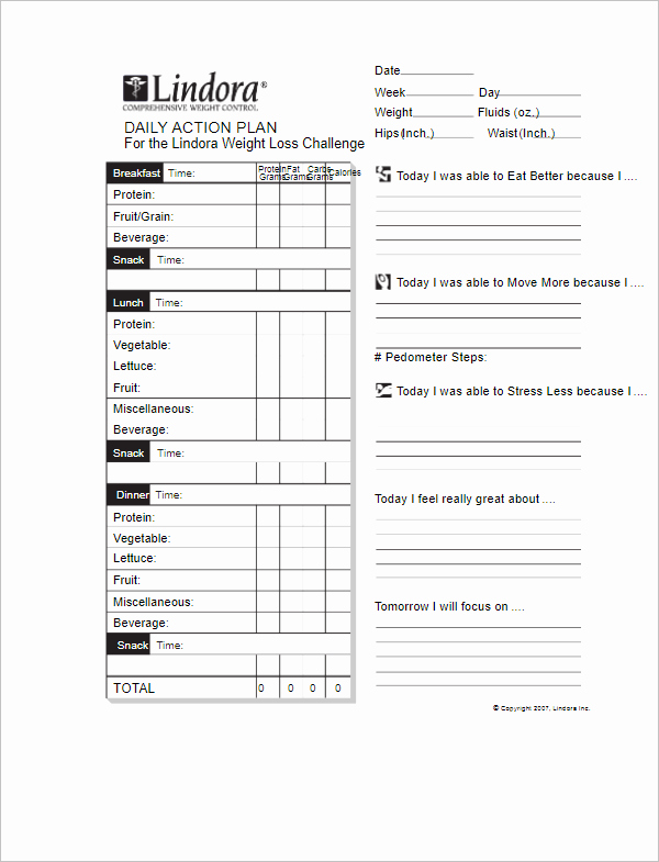 Daily Action Plan Template Best Of 31 Action Plan Templates Free Excel Word Examples Samples