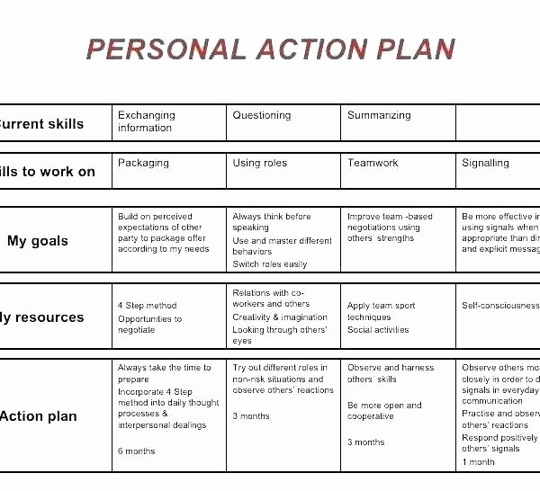 Daily Action Plan Template Best Of Daily Action Plan Template Child Care Action Plan Template