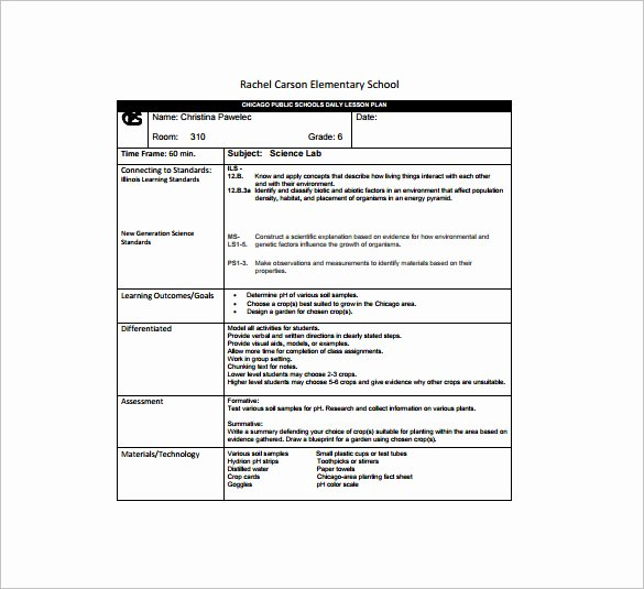 Daily Lesson Plan Template Pdf New Daily Lesson Plan Template Templates Data