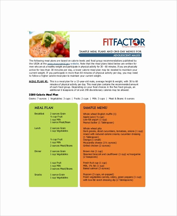 Daily Meal Plan Template Inspirational Daily Menu Planner Template 6 Free Pdf Documents