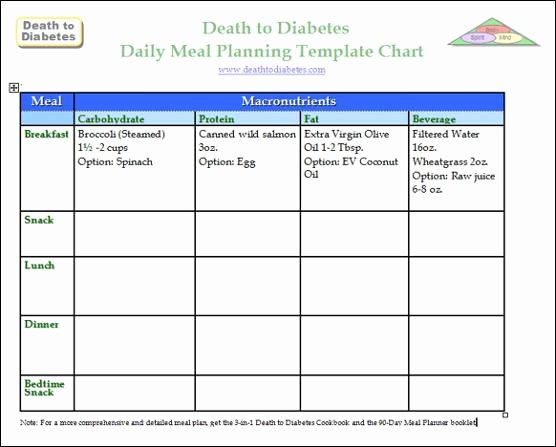 Daily Meal Plan Template Inspirational Diabetes Meal Planning Templates