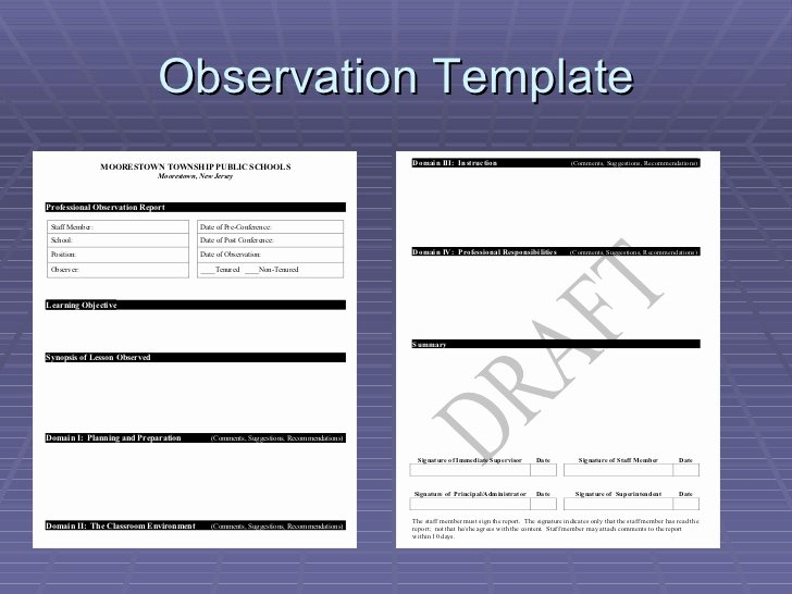 Danielson Lesson Plan Template Unique Danielson Observation Model