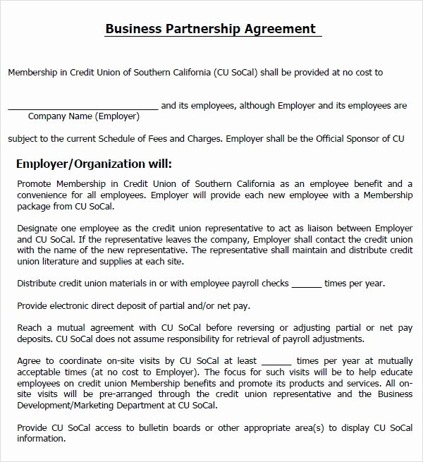 Dental Partnership Agreement Sample New Business Agreement form