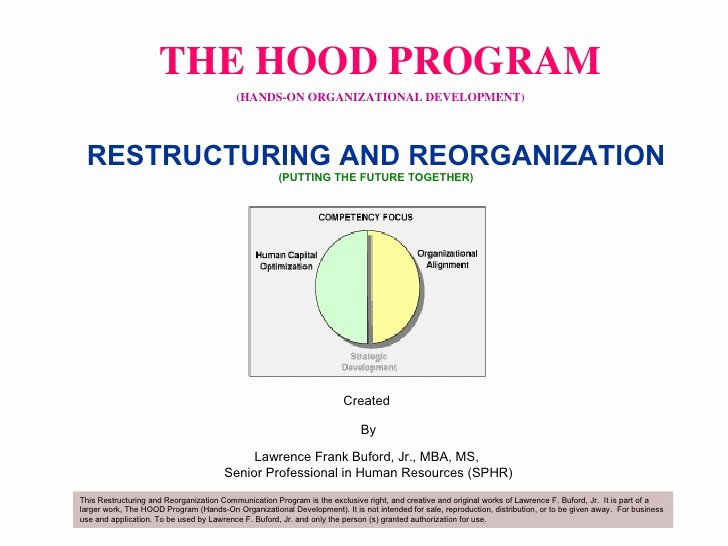 Department Reorganization Plan Template Awesome Restructuring and Reorganization Proposal Sample 1