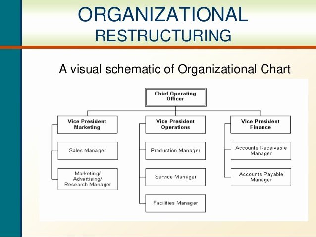 Department Reorganization Plan Template New Pany Chart Sample