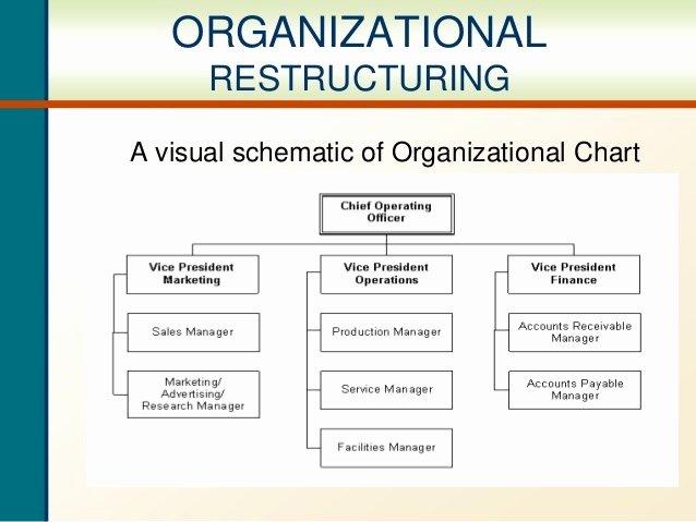 Department Reorganization Plan Template New Pany Chart Sample