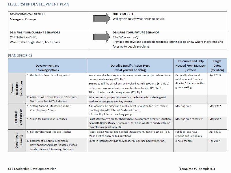 Development Action Plan Template Fresh Leadership Development Plan