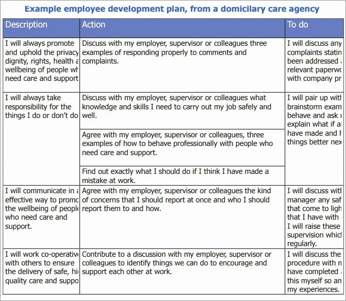 Development Action Plan Template Unique Employee Development Plan Template