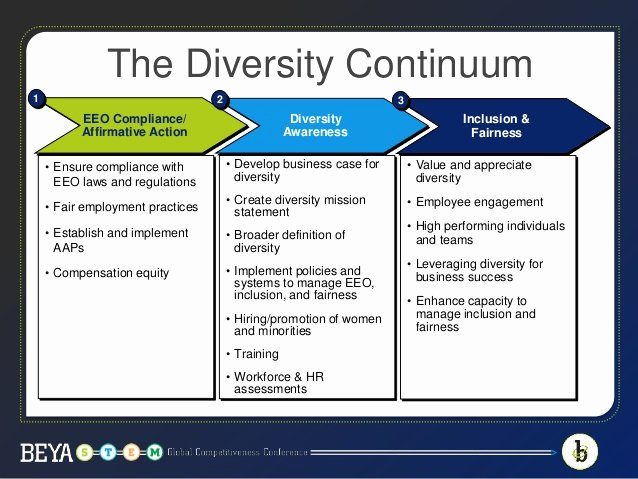 Diversity and Inclusion Plan Template Fresh Metrics Matter Measuring the Success Of Your Pany S