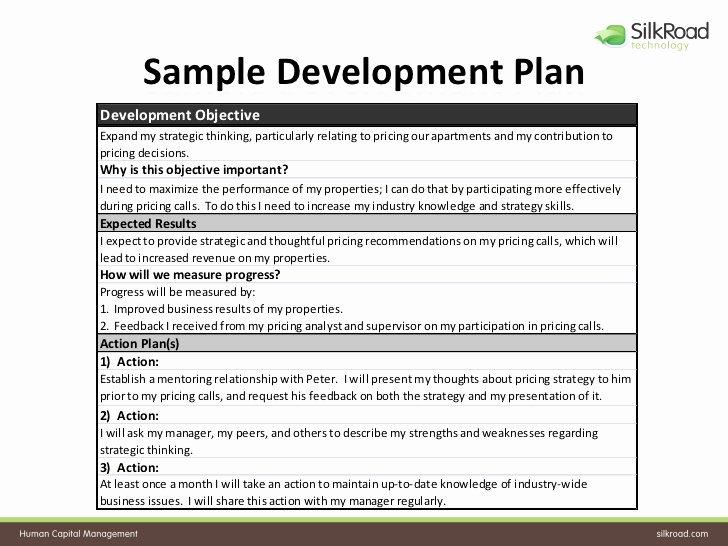 Diversity Strategic Plan Template Elegant Download Diversity Action Plan Template – Free Template Design