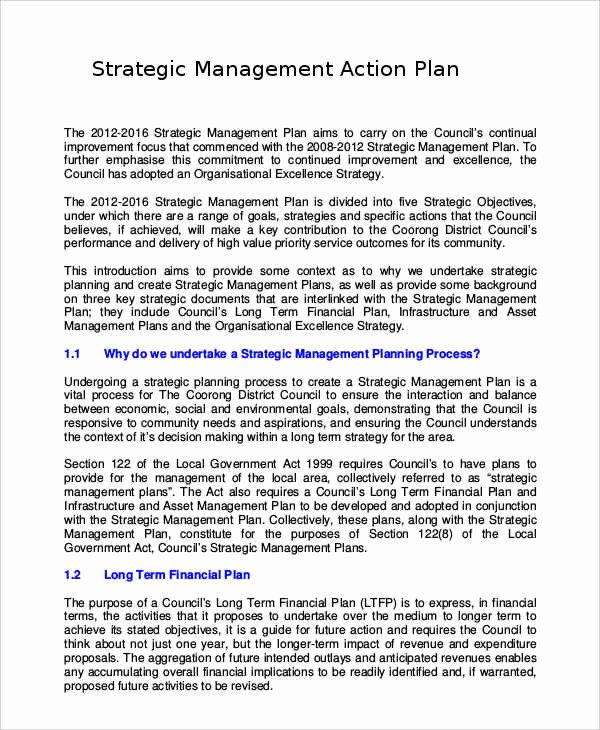 Diversity Strategic Plan Template Unique Free Strategic Plan 45 Free Word Pdf Ppt format