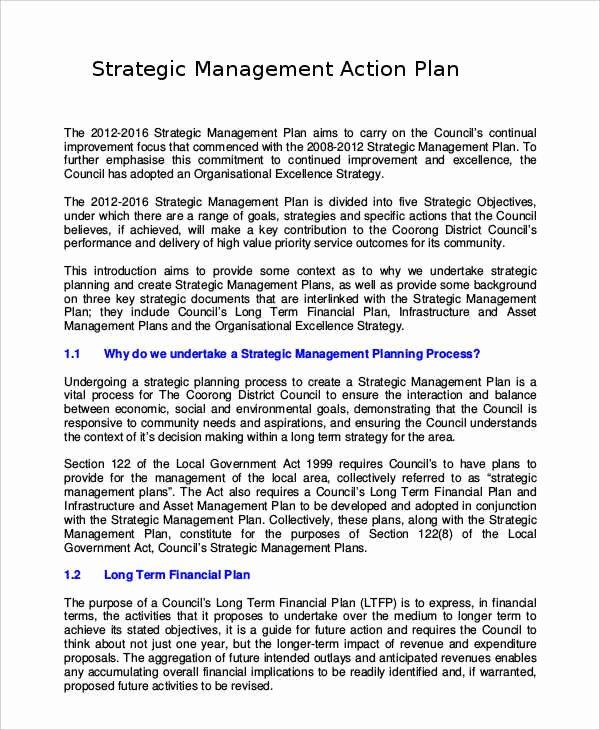 Diversity Strategic Plan Template Elegant Recruitment