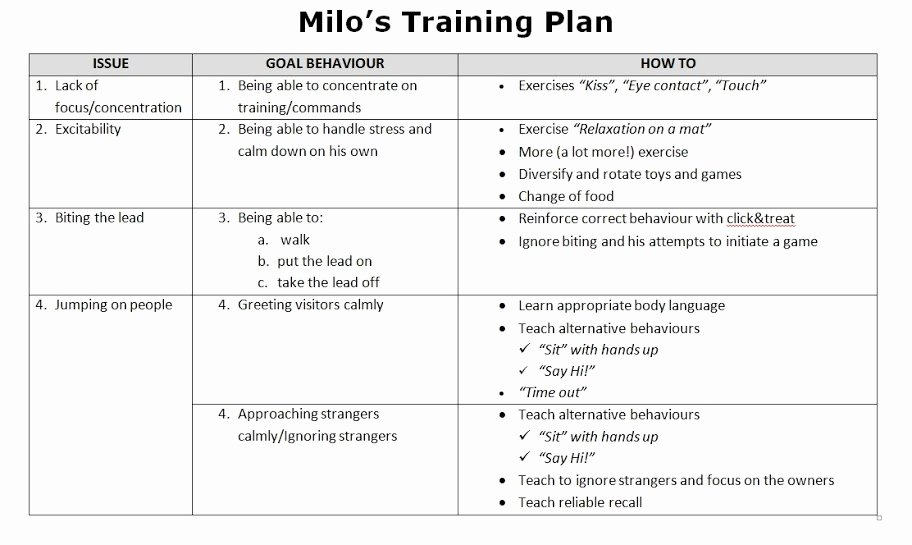 Dog Training Plan Template Beautiful 28 Of Obe Nce Training Plan Template