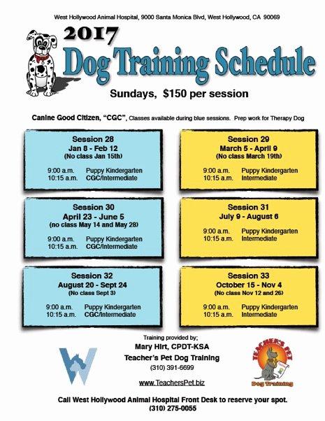 Dog Training Plan Template Best Of Teacher S Pet Dog Training