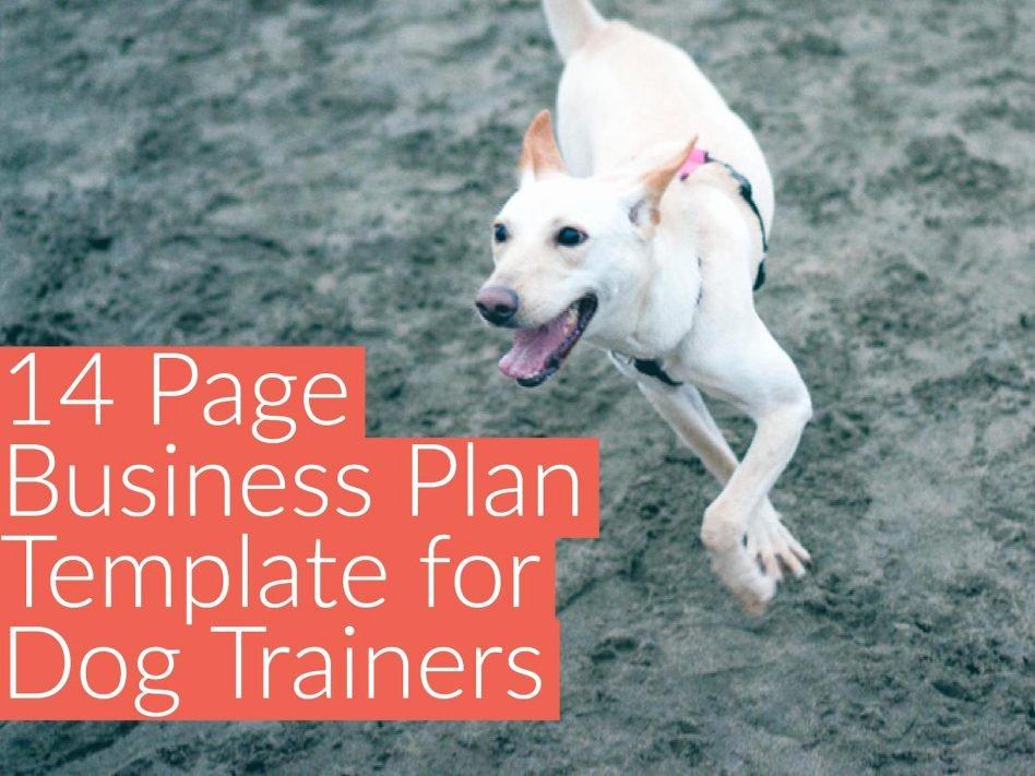 Dog Training Plan Template New Doggiedashboard
