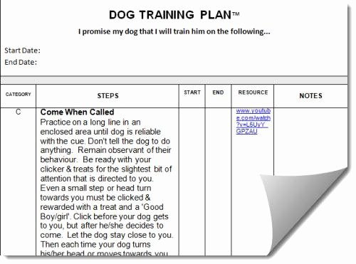 Dog Training Plan Template Unique How to Write A Dog Training Plan 3 Easy Steps