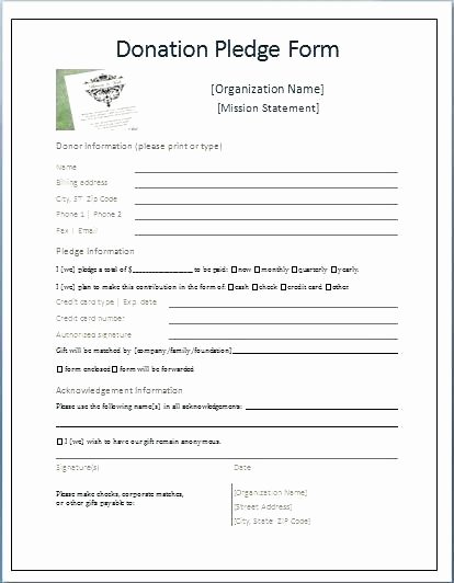 Donation Receipt Template Google Docs Lovely Pledge form Template Pdf