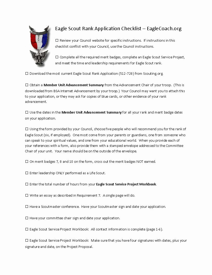 Eagle Letter Of Ambition Example Lovely Eagle Scout Essay Hepatitze