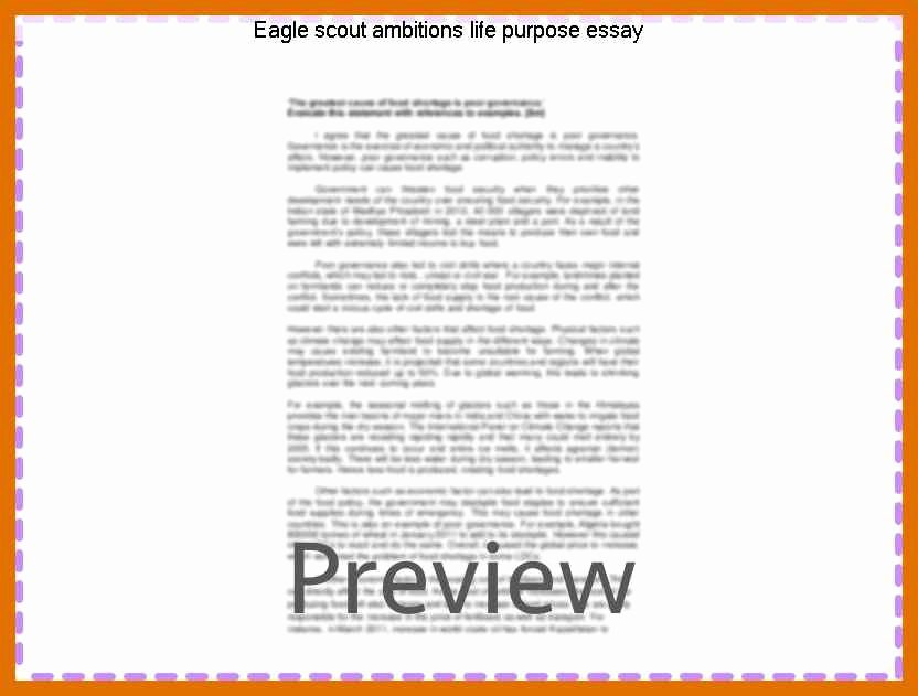 Eagle Scout Letter Of Ambition Example New 6 7 Eagle Scout Letter Of Ambition Example