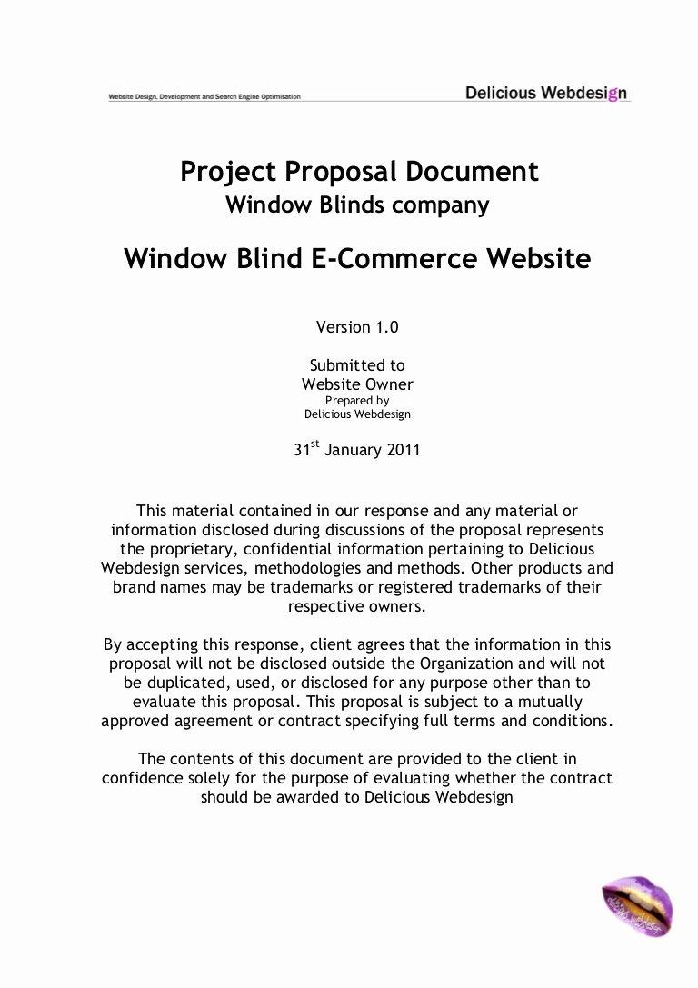 Ecommerce Business Plan Template Best Of Scope Proposal E Merce Website