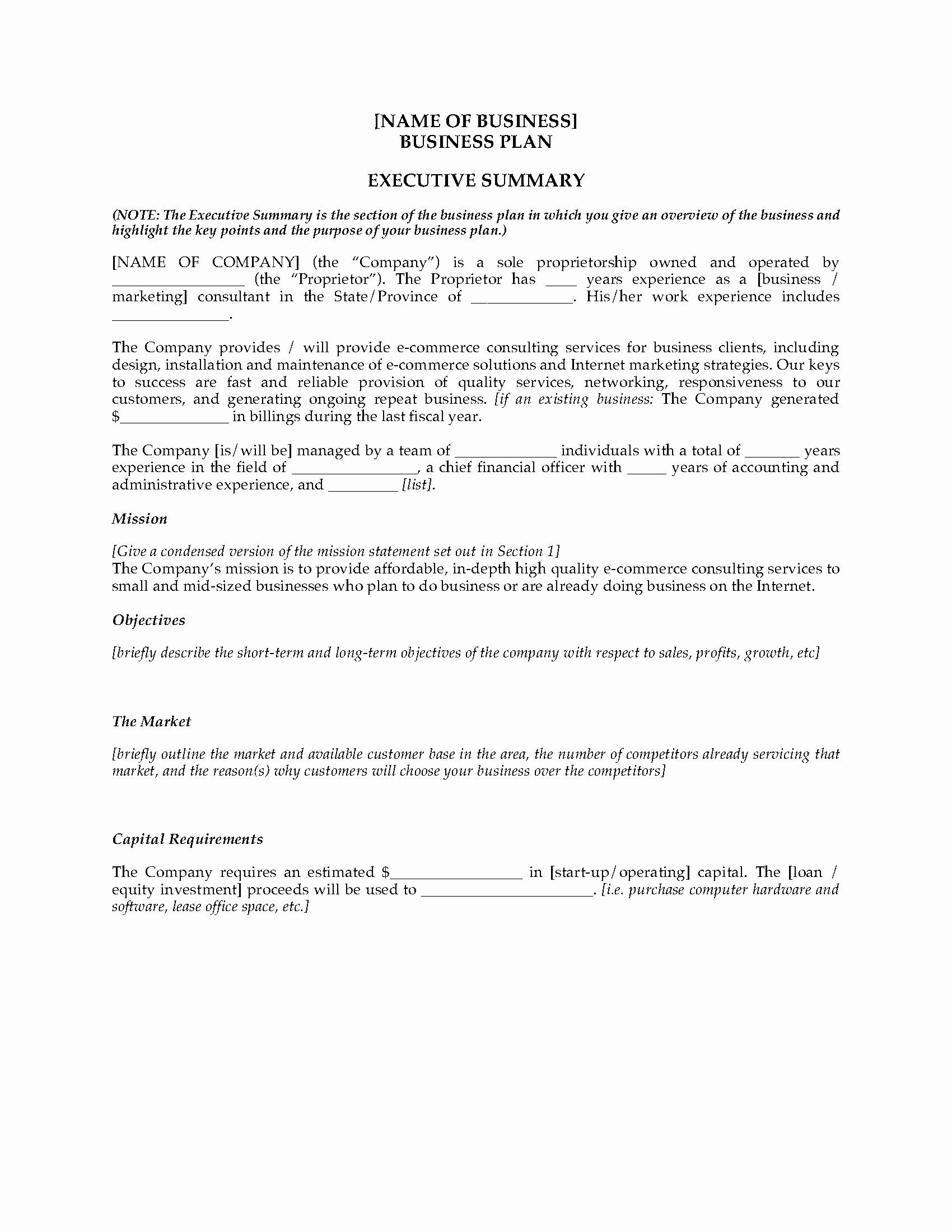 Ecommerce Business Plan Template Luxury E Merce Consultant Business Plan