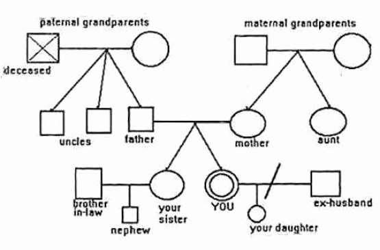 Editable Genogram Template Best Of 6 Genogram Templates Free Sample Templates