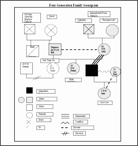 Editable Genogram Template New 10 Easy to Use Genogram Template Sampletemplatess
