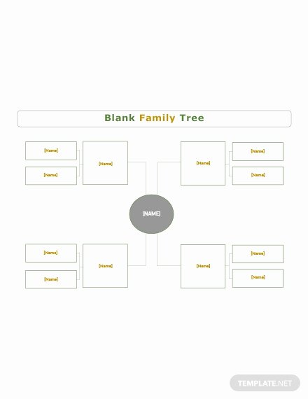 Editable Genogram Template New Blank Genogram Template Download 38 Family Trees In Word