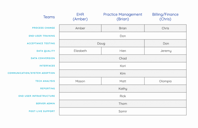 Ehr Implementation Plan Template Fresh Sample Ehr Project Plan