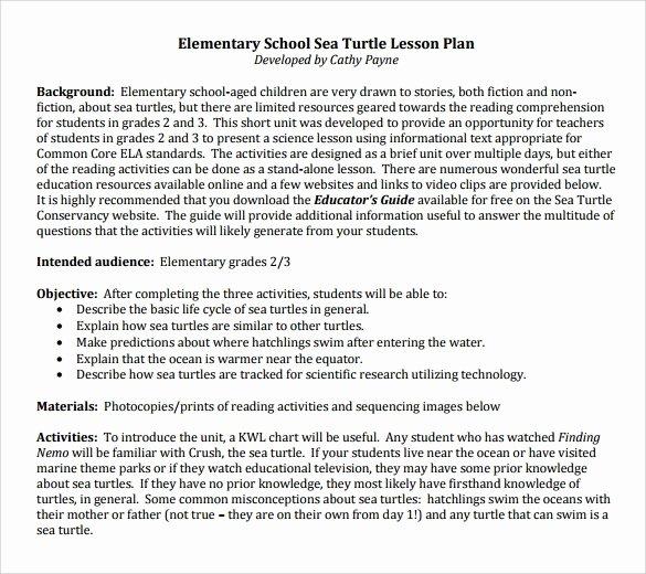 Elementary Lesson Plan Template Elegant 9 Elementary Lesson Plan Samples