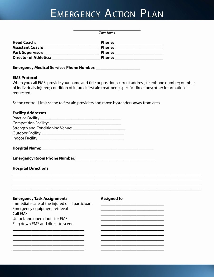 Emergency Action Plan Template Beautiful 45 Free Action Plan Templates Corrective Emergency