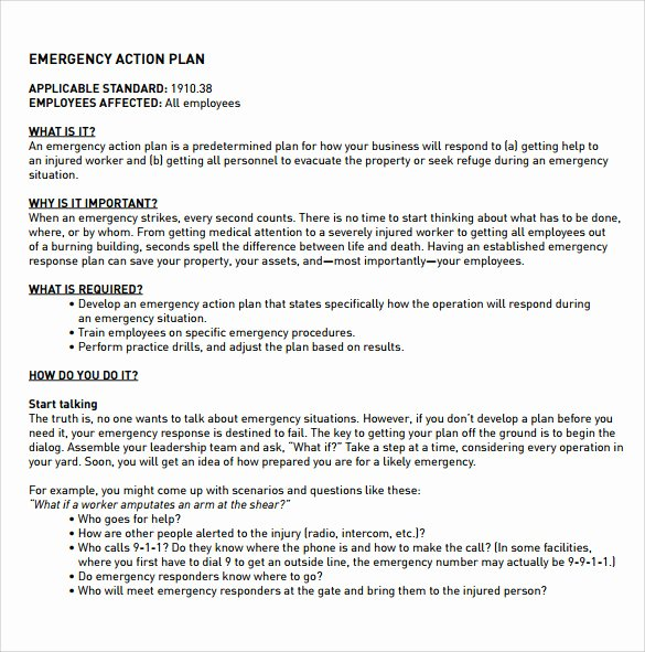 Emergency Action Plan Template Best Of 12 Sample Employee Action Plan Templates
