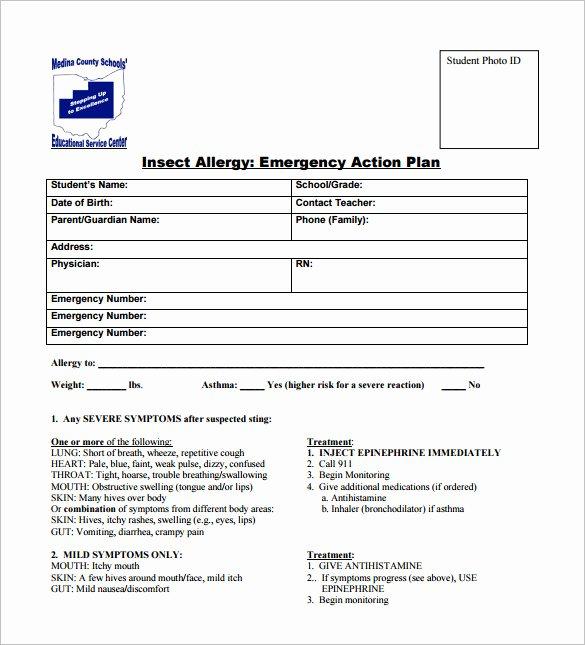 sample allergy action plan