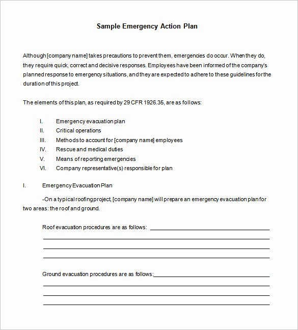 Emergency Action Plan Template Luxury 85 Action Plan Templates Word Excel Pdf