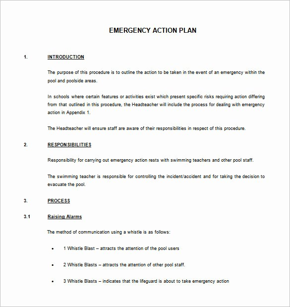 Emergency Action Plan Template Luxury Emergency Action Plan Template 8 Free Sample Example