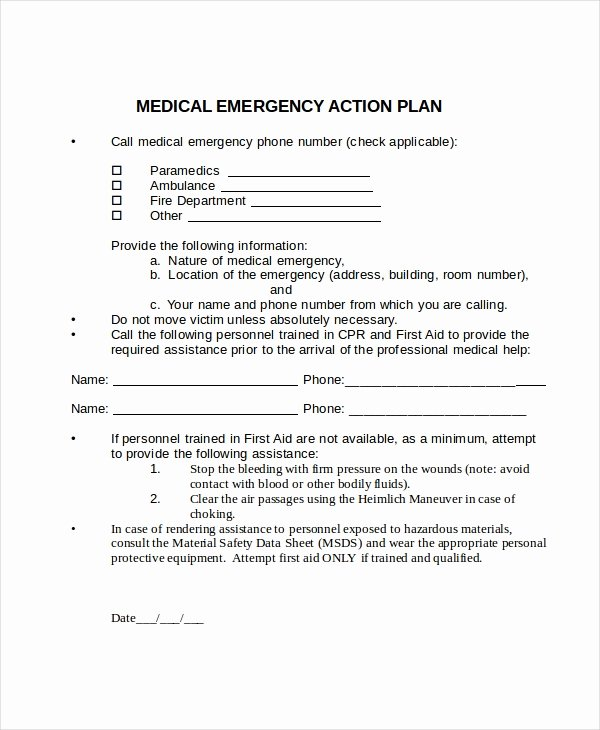 Emergency Action Plan Template Unique Action Plan Template 14 Free Word Pdf Document