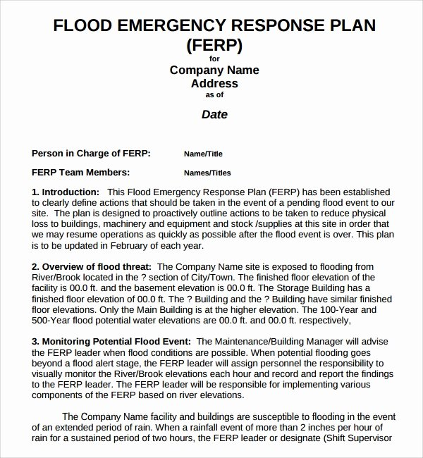 Emergency Management Plan Template Beautiful Sample Emergency Response Plan Template 9 Free