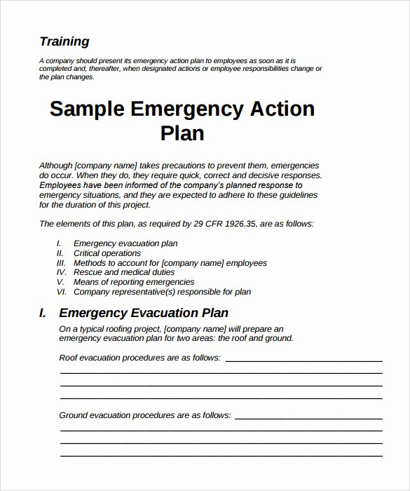 Emergency Response Plan Template Fresh Sample Emergency Action Plan 11 Free Documents In Word Pdf