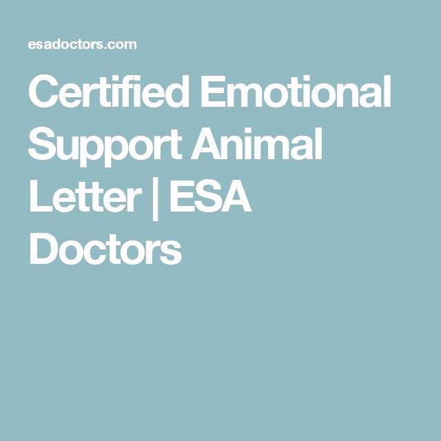 Emotional Support Animal Letter for Flying Example Unique 1000 Ideas About Emotional Support Animal On Pinterest