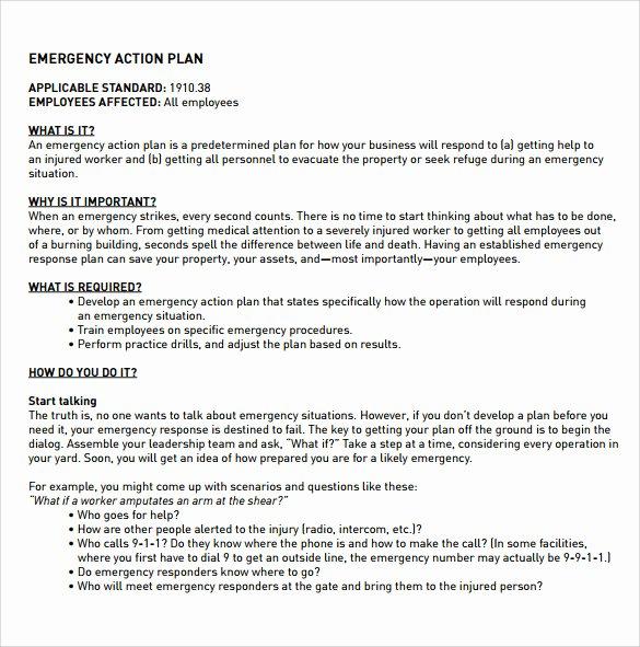 Employee Action Plan Template Elegant 12 Sample Employee Action Plan Templates