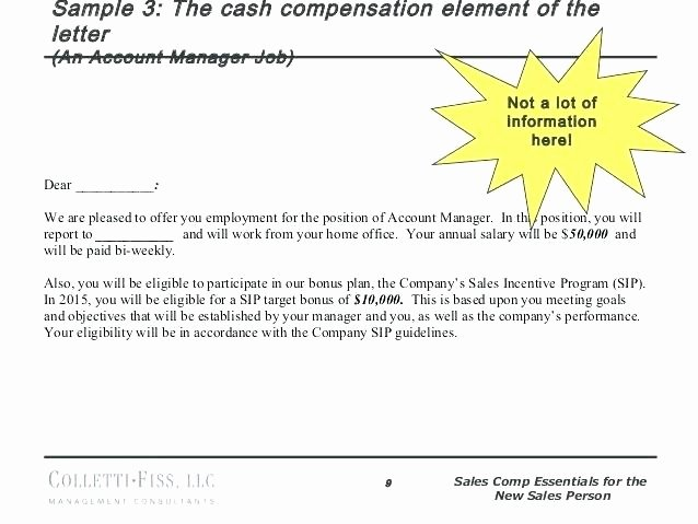 Employee Bonus Plan Template Lovely Employee Incentive Program Template Bonus Plan Examples