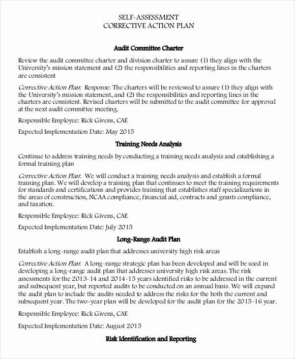 Employee Corrective Action Plan Template Elegant Corrective Action Plan Template 16 Free Sample Example