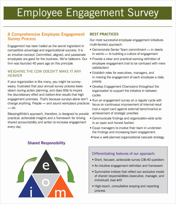 Employee Engagement Plan Template Lovely Employment Engagement Survey 7 Download Documents In