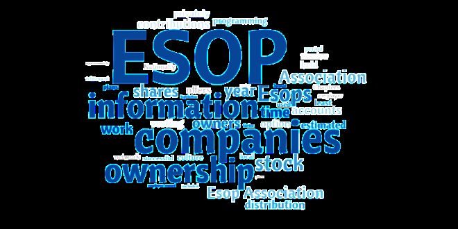 Employee Stock Option Plan Template Beautiful Esop Employee Stock Option Plan