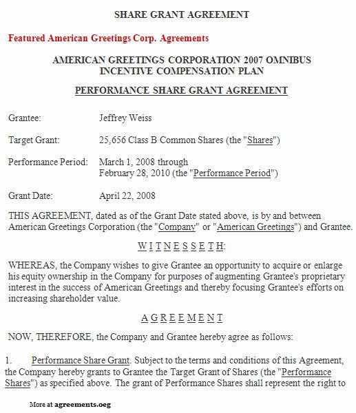 Employee Stock Option Plan Template Beautiful Stock Options Grant Letter