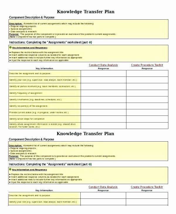 Employee Transition Plan Template Beautiful Project Transition Plan Template Transition Plan Examples