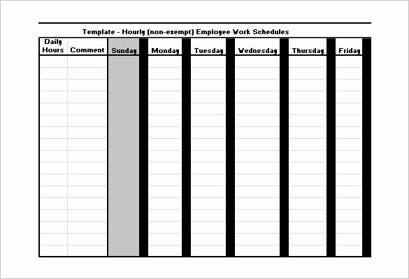 Employee Work Plan Template Best Of Employee Work Schedule Template 16 Free Word Excel