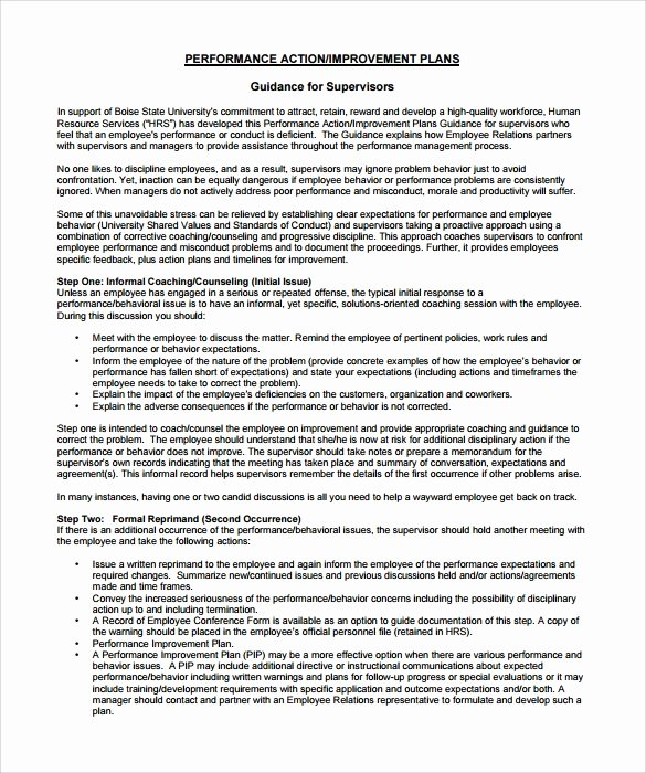 Employment Action Plan Template Best Of 12 Sample Employee Action Plan Templates